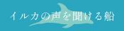 天草海鮮蔵 イルカウォッチング