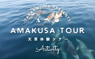 天草宝島観光協会女子スタッフおすすめの旅 天草ツアー
