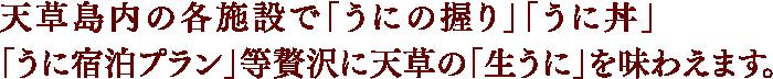 天草島内の各施設で「うにの握り」「うに丼」「うに宿泊プラン」等贅沢に天草の「生うに」を味わえます。