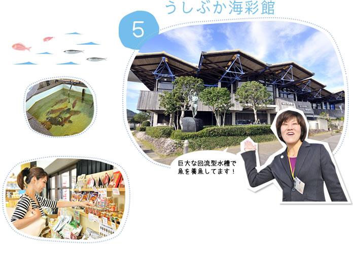 5.うしぶか海彩館