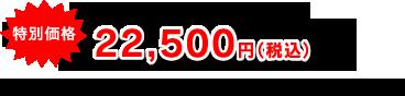大人お一人様(1泊4食)22,500円(税込) 旅行企画・実施:(一社)天草宝島観光協会 TEL:0969-22-2243