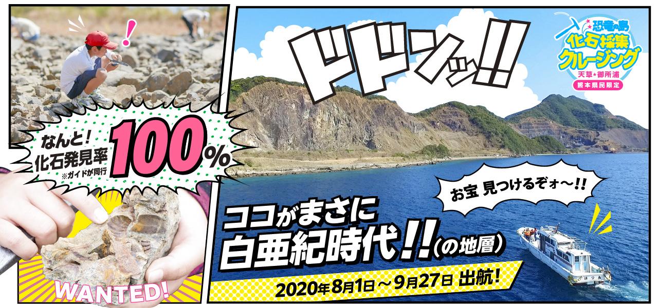 【熊本県民限定】海上タクシー貸切!恐竜の島 化石採集クルージング