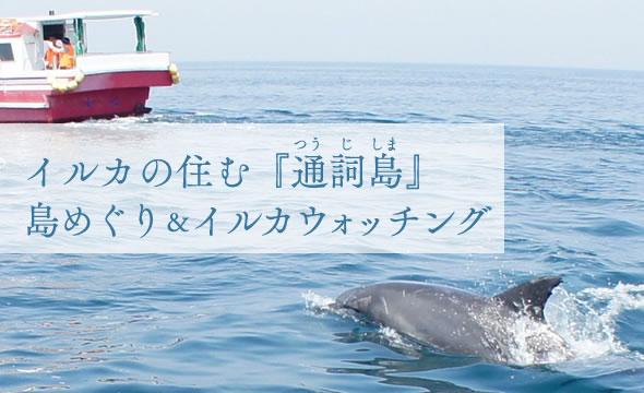 イルカの住む『通詞島』島めぐり&イルカウォッチング